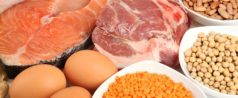 Eat the right amount of Protein