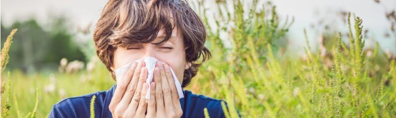Seasonal Aallergies Symptoms Come With Rising Pollen Counts Each Year
